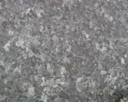 Labrador Bleu clair